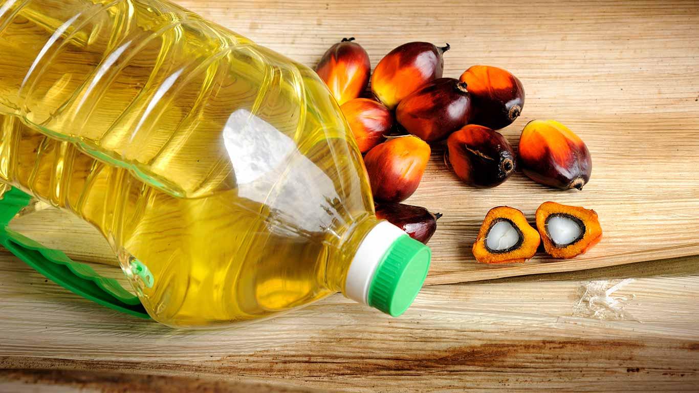 Perfil de ácidos grasos de los diferentes aceites más usados en la preparación de los alimentos y recomendaciones de consumo