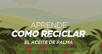 Aprende como reciclar el aceite de palma