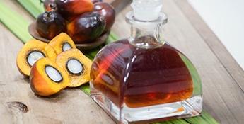 Las realidades del aceite de palma